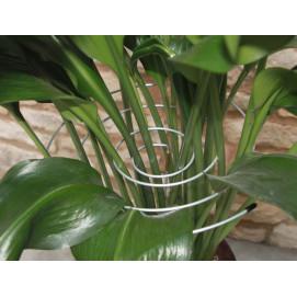 Tuteurs spirale en acier pour plantes (les 3)