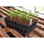 Godets à semis pour racines profondes