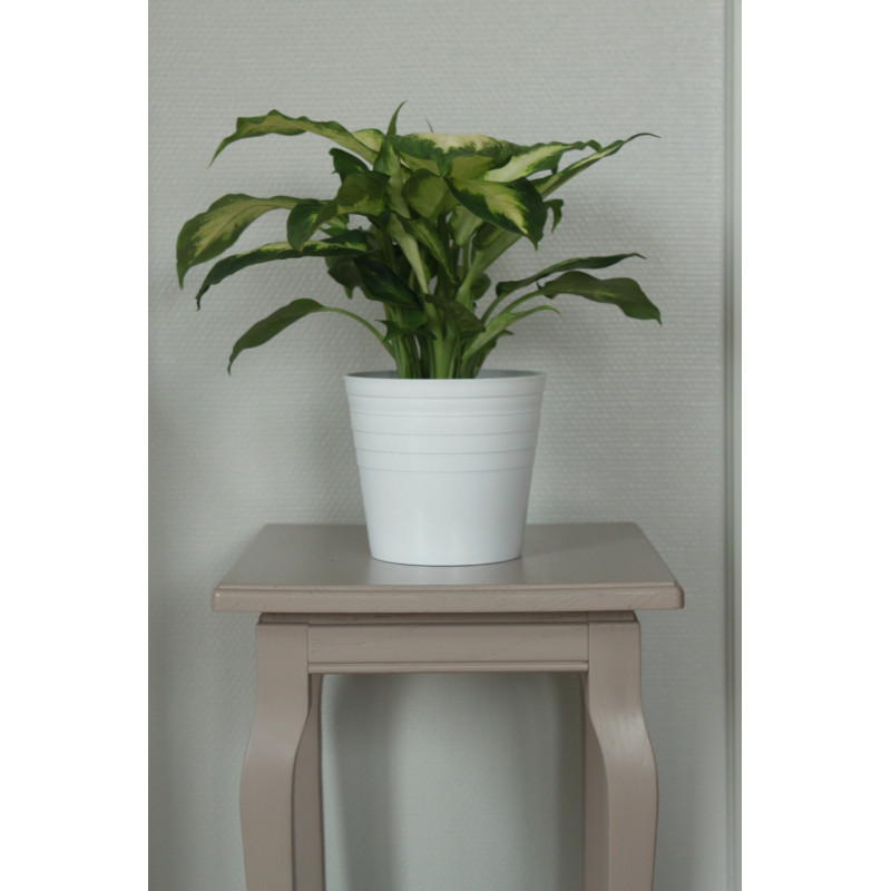 cache pot blanc l 39 unit. Black Bedroom Furniture Sets. Home Design Ideas