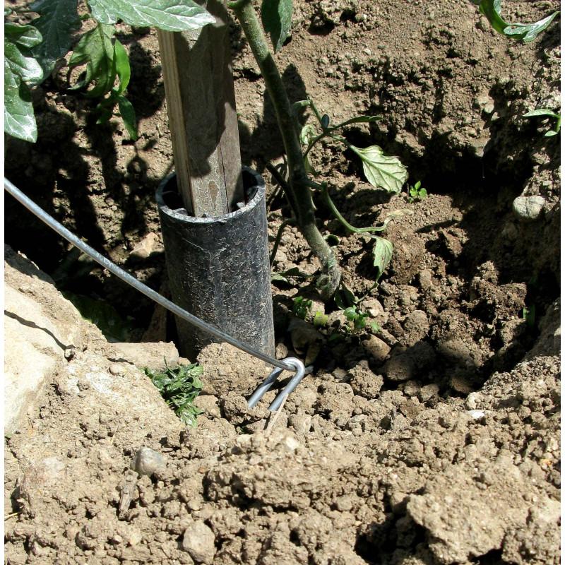 Tuteurs serpentin acier plantes grimpantes les 3 for Jardinetsaisons
