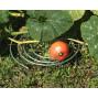 Support fraisier en acier galvanisé (les 5)