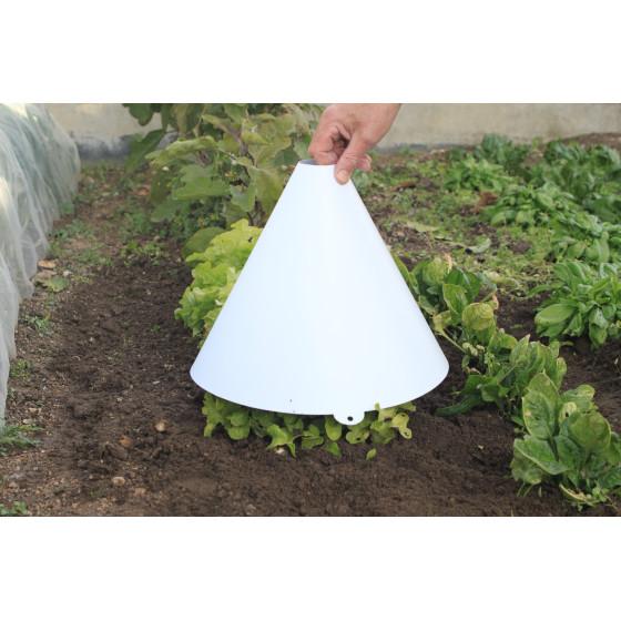 Cloche à salade opaque blanche