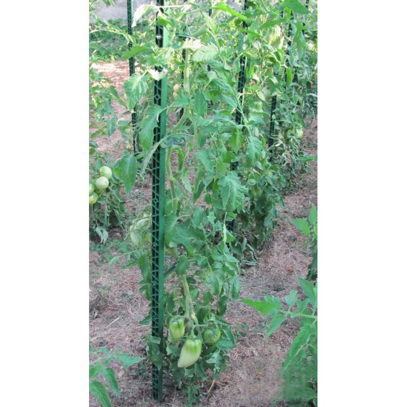 Piquet de tomates en plastique vert sapin 1 80 m - Piquet de tomate ...