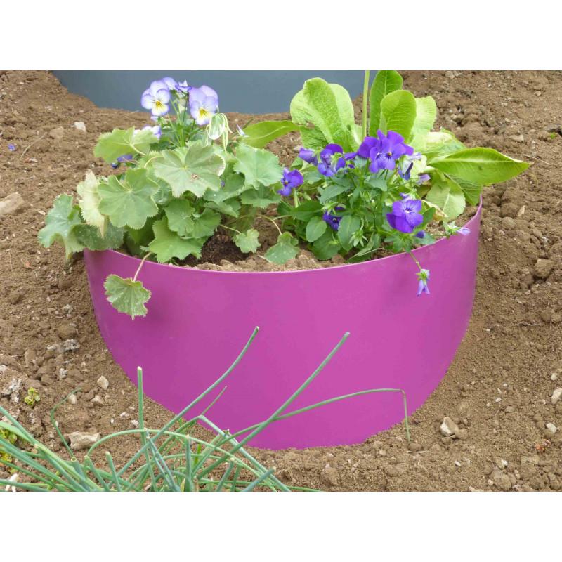 plante rampante pour talus bordure de jardin demilune en acier fushia pour talus campanule. Black Bedroom Furniture Sets. Home Design Ideas