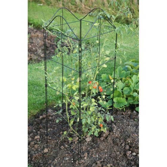 Tuteur treillage amovible plantes grimpantes - Tuteur plante grimpante ...