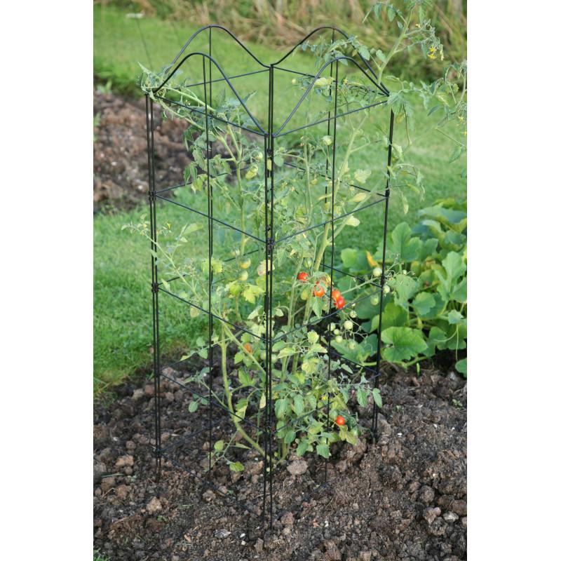 Support treillis et tuteur plante grimpante - Jardin et Saisons