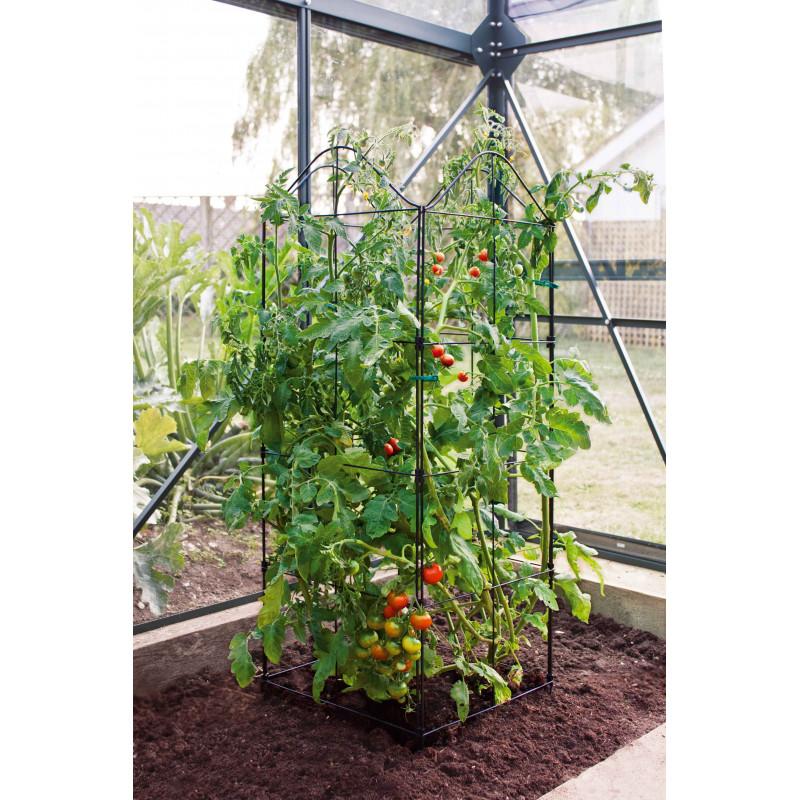 Support treillis et tuteur plante grimpante jardin et for Jardiniere pour plante grimpante