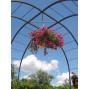 Gloriette de jardin en acier gris anthracite