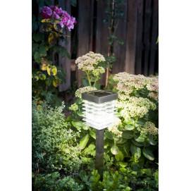 Lampe solaire de jardin à LED en inox