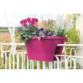 Jardinière à balcon corsica fushia