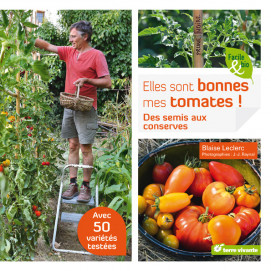 piquet de tomates en plastique vert anis 1 80 m jardin et saisons. Black Bedroom Furniture Sets. Home Design Ideas
