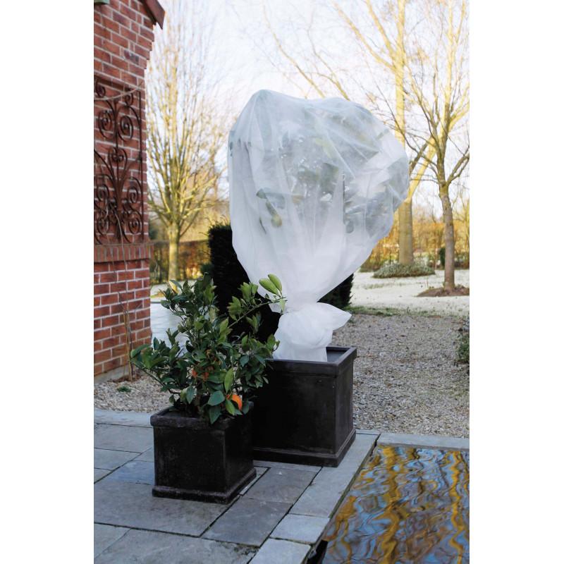voile d 39 hivernage pour plantes et fleurs jardin et saisons. Black Bedroom Furniture Sets. Home Design Ideas