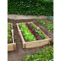 Rectangle potager en bois non traité H 22 cm