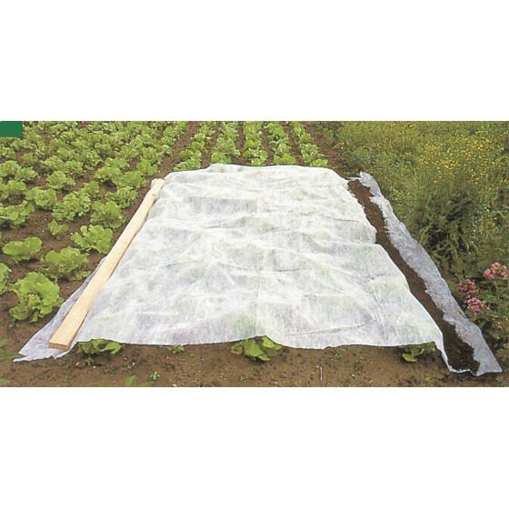Voile d 39 hivernage et de for age 5 m x 2 m jardin et saisons - Voile de forcage ...