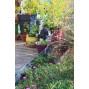 Bordure de jardin en acier galvanisé brut ajourée