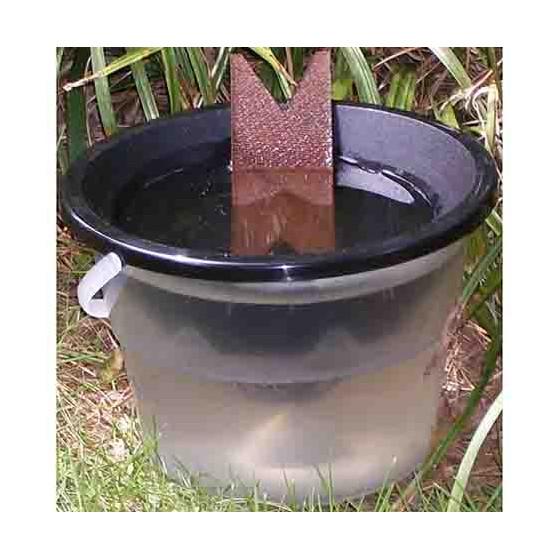Piège anti larve de moustique écologique 100% naturel