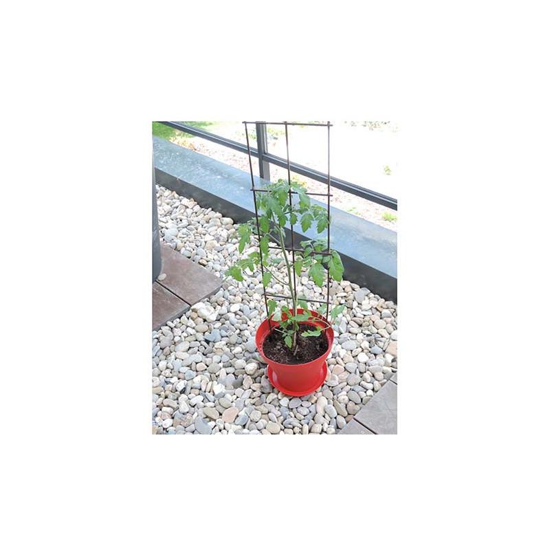 tuteur support de plantes en fer vieilli planter jardin et saisons. Black Bedroom Furniture Sets. Home Design Ideas