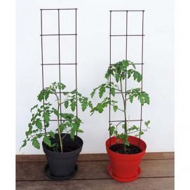 choix vari de tuteur pour plante grimpante avec jardin et. Black Bedroom Furniture Sets. Home Design Ideas