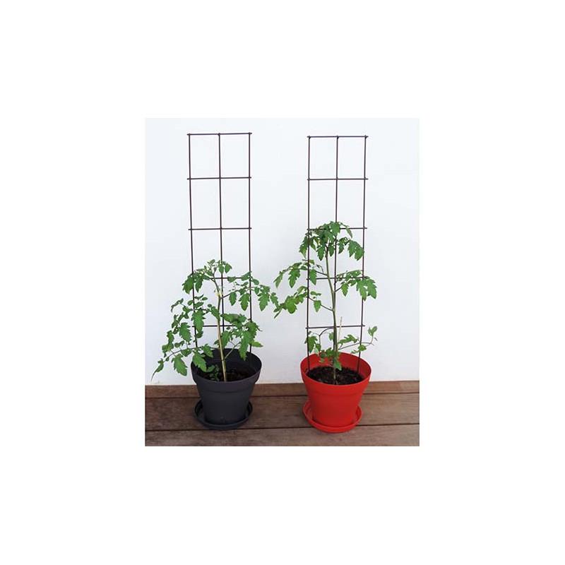 Tuteur support de plantes en fer vieilli à planter ...