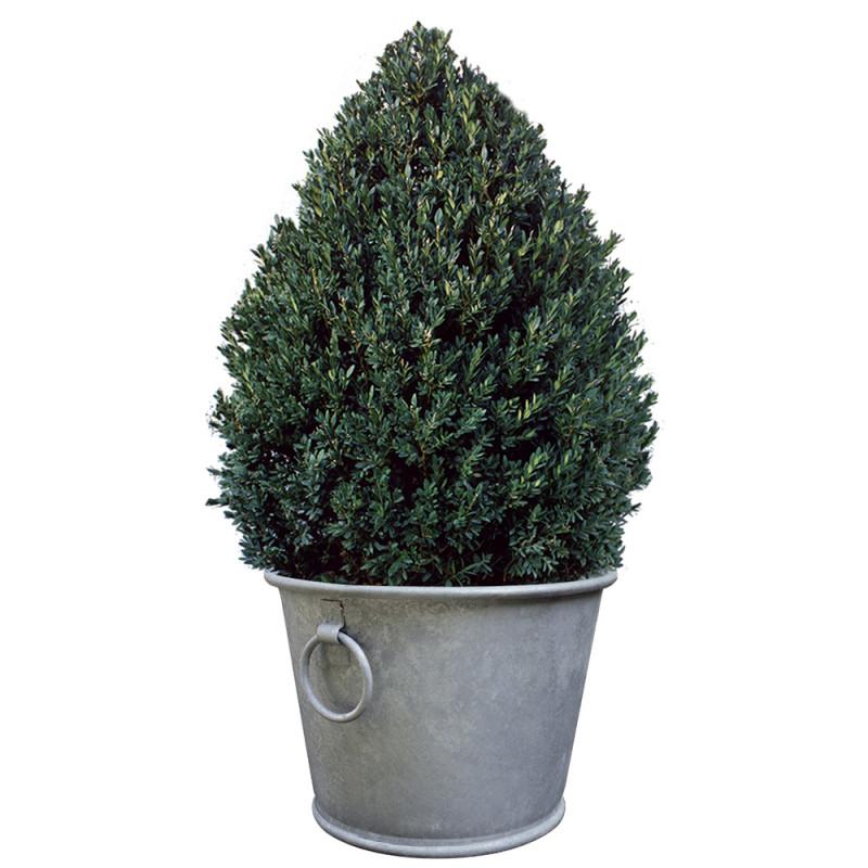 Pot en zinc rond 28 litres haut de gamme chez jardin et saisons - Pot de fleur en zinc ...