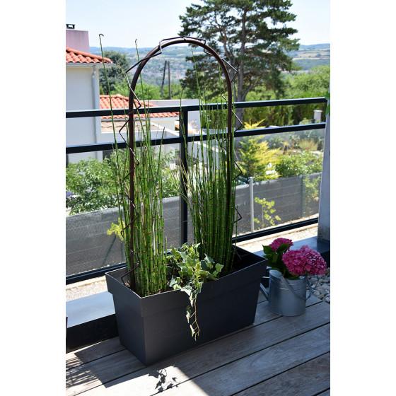 Petite Arche De Jardin Pour Plantes Grimpantes