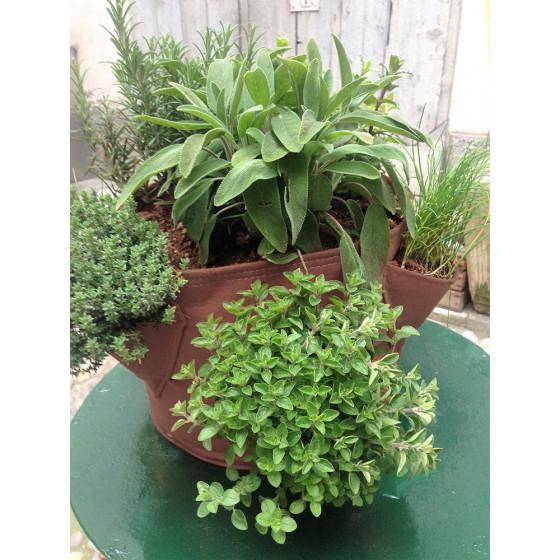 0010380dc6 Sac à plantation 17 litres marron pour cultiver des herbes aromatiques