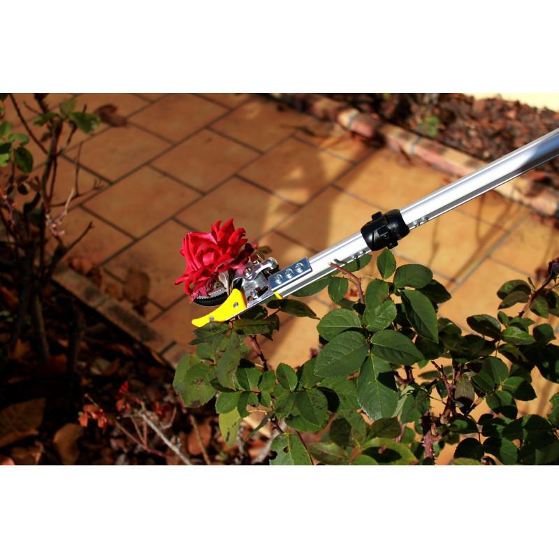 S cateur lagueur orientable for Jardinetsaisons