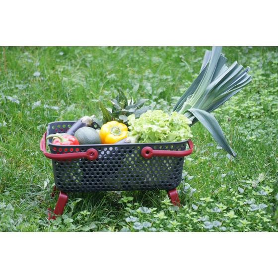 panier de jardin en plastique Kajo
