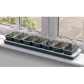 Mini serre de germination pour semis