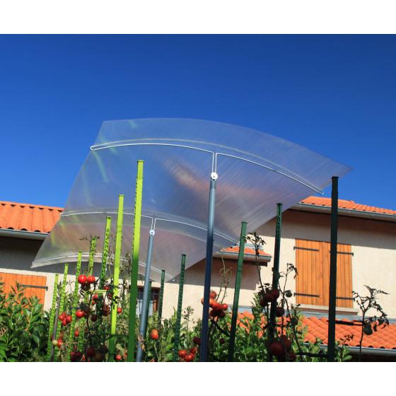 Abri pour tomate réglable en hauteur avec toit en polycarbonate