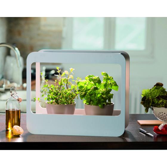 Mini jardin d'intérieur à LED
