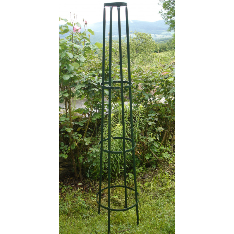 Votre tuteur colonne corset en acier vert sign jardin et saisons - Support pour rosier grimpant ...