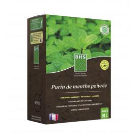 Purin de menthe poivrée 1,5 L
