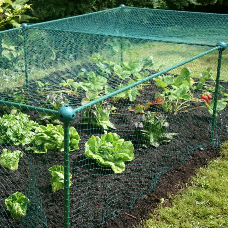 filet de protection pour potager 2x1 m jardin et saisons. Black Bedroom Furniture Sets. Home Design Ideas