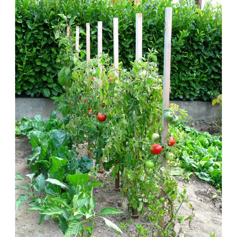 Assez Tuteur à tomates 1,50 cm en bois - Jardin et Saisons ZJ62