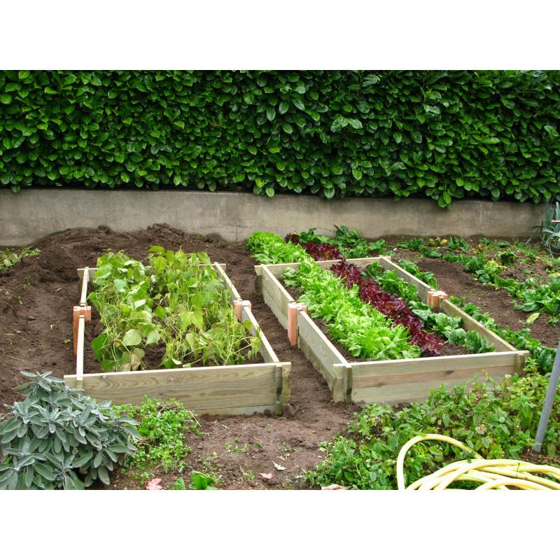 Le potager de jardin rectangulaire en bois non trait jardin saisons for Jardin potager bois