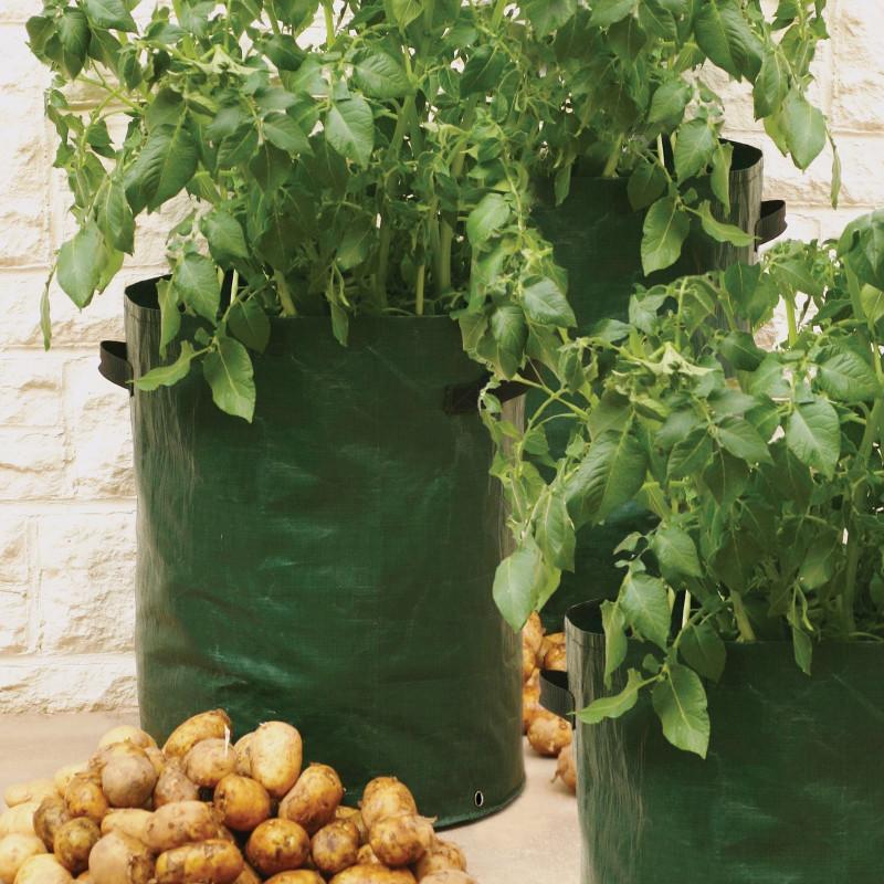 votre sac plantation sp cial pomme de terres de jardin et saisons. Black Bedroom Furniture Sets. Home Design Ideas