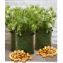Sacs de plantation pommes de terre (les 3)
