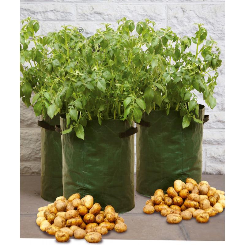 Votre sac plantation sp cial pomme de terres de jardin et saisons - Date plantation pomme de terre ...