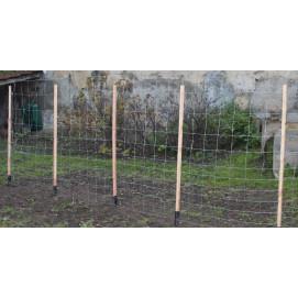 Support à rames pour plante grimpante