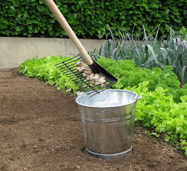 jardin et saisons vous conseille sur le liste des travaux