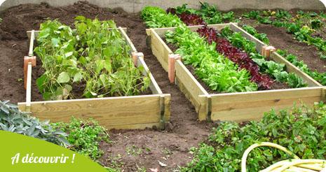 Un potager de jardin rectangulaire en bois douglas !