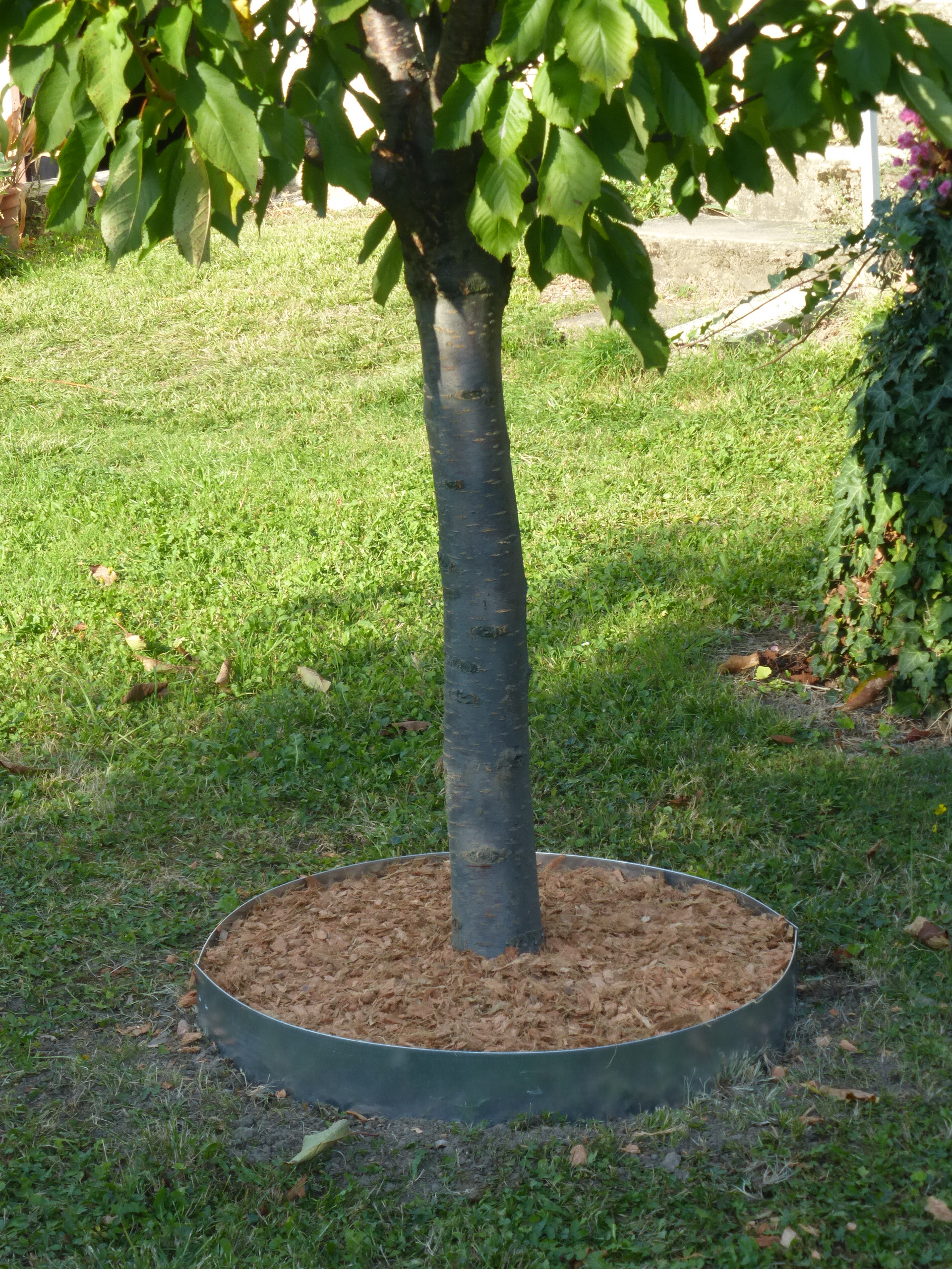 Les conseils pratiques de jardin et saisons pour installer for Jardinetsaisons